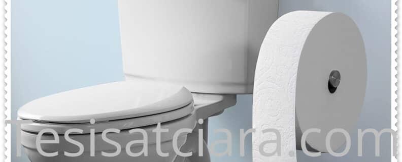 Şirinevler tuvalet tıkanıklığı açma